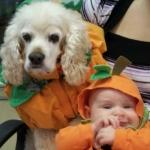 halloweenhowler2011_12