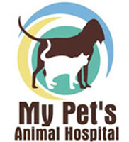 About My Pets Animal Hospital - Lakeland Florida