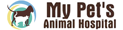 My Pet's Animal Hospital – Lakeland, FL