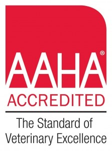 My Pet's Animal Hospital Is An AAHA Accredited Veterinary Hospital
