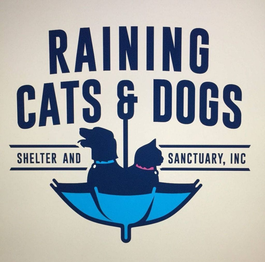 Raining cats and dogs shelter and sanctuary - Plant City, Florida